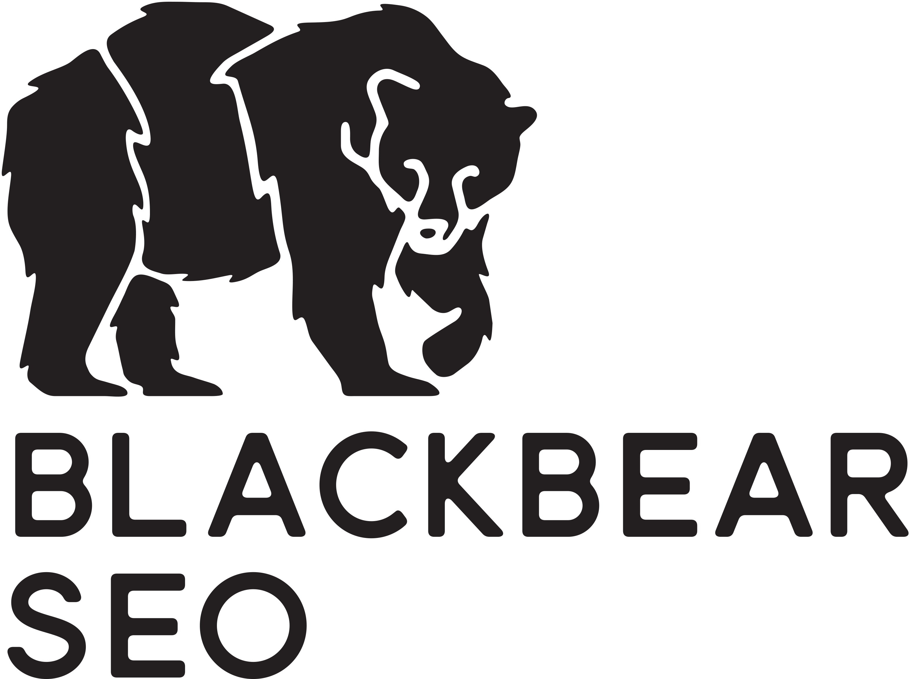 Black Bear SEO